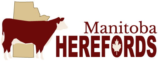 Manitoba Hereford Association